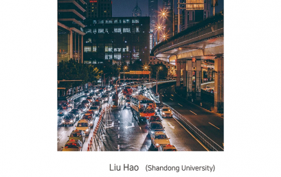 Mobility and Satisfaction of Urban Public Services in Shandong, China