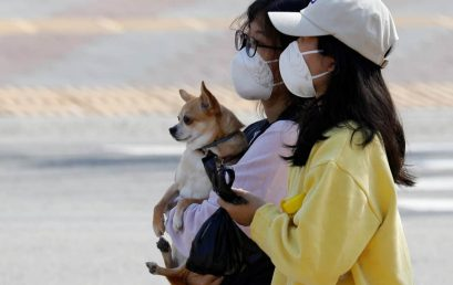 [INDEPENDENT]  We've observed how South Korea and the US have handled coronavirus — and the differences are clear / 동북아시아센터 김재형 선임연구원